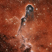 IC 1396 Elephant Trunk
