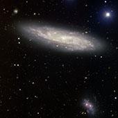 NGC 2770