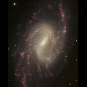 NGC 3359 