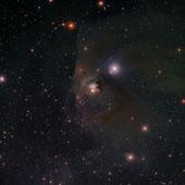 T Tauri and NGC 1555